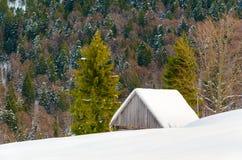 Chambre sur un flanc de coteau couvert de neige et d'arbres verts Photo stock