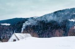 Chambre sur un flanc de coteau couvert de neige et d'arbres verts sur le Sid Photo stock