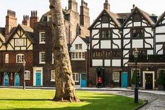 Chambre verte et vieille de tour de reine du ` s dans la tour de Londres Londres Image libre de droits