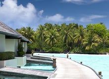 Chambres au-dessus de l'eau de mer tranquille transparente et d'un palmier Image libre de droits