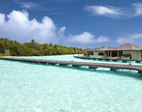 Chambres au-dessus de l'eau de mer tranquille transparente et d'un palmier Photo libre de droits