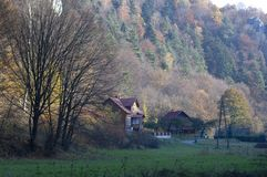 Chambres dans la forêt avec des arbres dans Ojcow, Pologne, 10 29 2005 images stock
