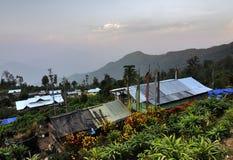Chambres de village avec des fleurs et des plantes, village de Silerygaon, Sikkim Photographie stock libre de droits