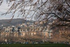 Chambres et arbres d'hiver au lac Neuchâtel, Suisse Photo stock