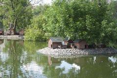 Chambres pour des canards, des cygnes et d'autres oiseaux sur le lac en parc Images stock