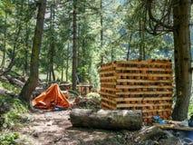 从Chame,尼泊尔的伐木工人 免版税库存照片