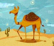 Chameau d'animal de compagnie sur le fond de désert Photo stock