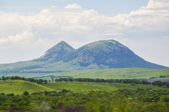 Chameau de montagne de Zheleznovodsk Images stock