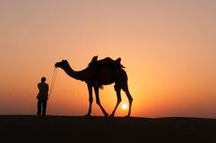 Chameau de silhouette dans le désert de Thar Photos stock