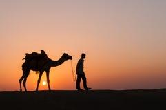 Chameau de silhouette dans le désert de Thar Photographie stock libre de droits