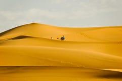 Chameau de touristes d'équitation le long des dunes de sable image stock