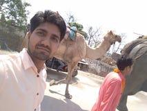 Chameau et éléphant photos libres de droits