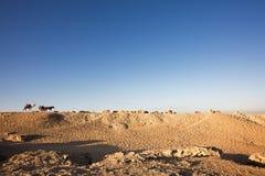 Chameau et un horsecart sur un désert rocheux Photographie stock