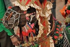 Chameau indien Images libres de droits