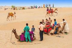 Chameaux dans le désert de Thar Photographie stock libre de droits