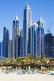 Chameaux sur une plage de Dubaï Photo stock