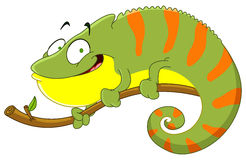 Chameleon. Illustration of a smiling Chameleon Royalty Free Stock Image