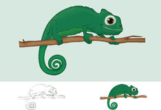chameleon vector illustratie