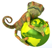 Chameleon. Fun chameleon, 3d generated picture Stock Photography