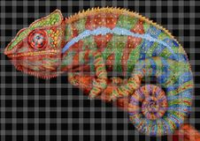 Chameleon. Artistic mosaic texture decor panels Stock Image