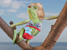 Chameleon Bathing Beauty. A veiled chameleon is sunning herself near a beach wearing a bikini Royalty Free Stock Photos