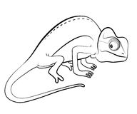 Chameleon cartoon Stock Image
