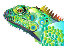 Chameleon cartoon character isolated on white Royalty Free Stock Photos