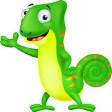 Chameleon cartoon Stock Photography