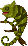 Chameleon cartoon smiling Stock Image