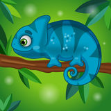 Chameleon Character with Background Stock Photos