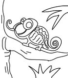 Chameleon coloring page. Hand drawn chameleon coloring page for kids Stock Image