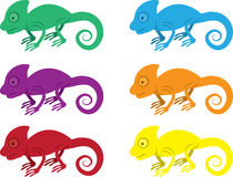 Chameleon Colors Stock Image