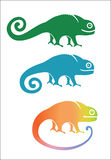 Chameleon. Different colors, movements, emotions Royalty Free Stock Photo