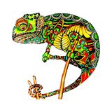 Colored zentangle chameleon. Doodle exotic wild animal. Abstract lizzard. Vector image of reptile isolated on white. Chameleon with doodle pattern. Coloring page Stock Images