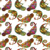 Colored zentangle chameleon seamless pattern. Doodle exotic wild animal. Abstract lizzard. image of reptile isolated on royalty free illustration