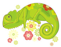 Chameleon and flowers Royalty Free Stock Images