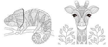 Chameleon and giraffe set for coloring book page and other printed product. Vector illustration royalty free illustration