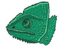Chameleon. Hand drawn, sketch, cartoon illustration of chameleon Stock Photography
