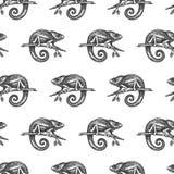 Chameleon hand drown illustration sketch seamless pattern vector illustration