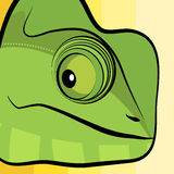 Chameleon illustration Royalty Free Stock Photos