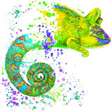 Chameleon illustration with splash watercolor textured background Stock Photos