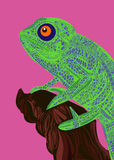 Chameleon lizard drawing color graphics details Stock Image