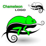 Chameleon logo. Black and white and color version. Stock Images