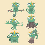 Chameleon set. Cartoon chameleon cute illustration set Stock Image