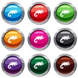 Chameleon set 9 collection. Chameleon set icon isolated on white. 9 icon collection vector illustration Royalty Free Stock Photo