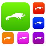 Chameleon set collection. Chameleon set icon in different colors isolated vector illustration. Premium collection Royalty Free Stock Photography