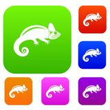 Chameleon set collection. Chameleon set icon in different colors isolated vector illustration. Premium collection Royalty Free Stock Photos