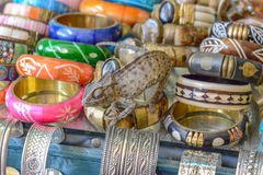 Chameleon sitting on  jewelry on the streets of tuni Royalty Free Stock Image