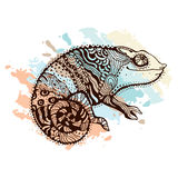 Chameleon. Stylized chameleon lizard. Hand Drawn Reptile, vector illustration in doodle style Royalty Free Stock Image