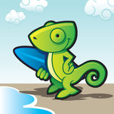 Chameleon surfer Royalty Free Stock Photo